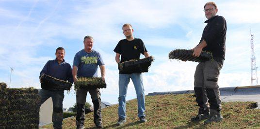 TTV – Quand un toit Lavallois devient un jardin